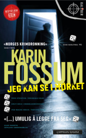 I can see in the dark av Karin Fossum (Heftet)
