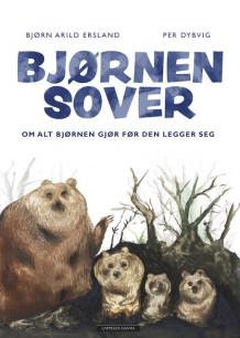 Bjørnen Sover Av Bjørn Arild Ersland Innbundet Childrens Booksn
